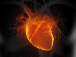 Израильские ученые нашли новый метод лечения сердечной недостаточности