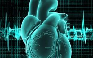 Кальциевые волны провоцируют сердечную аритмию