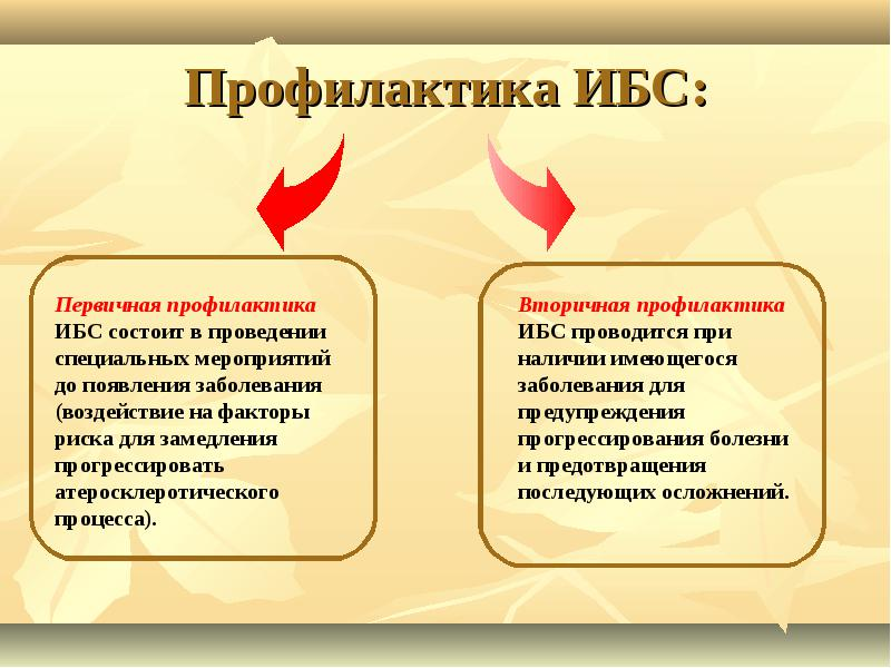 Профилактика ИБС