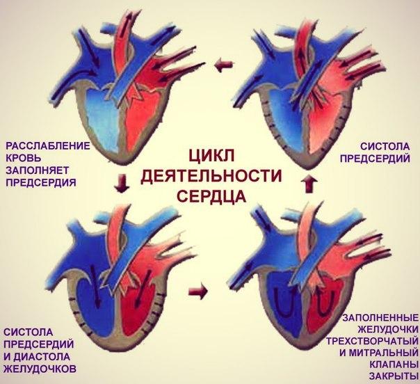 сердечная-недостаточность-симптомы-лечение-таблетки-011